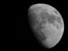 grey-moon